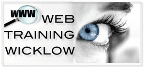 Web training Dublin logo